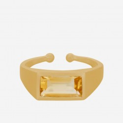 Pernille Corydon | Treasure Ring | Forgyldt-20